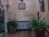nuestro_patio_6